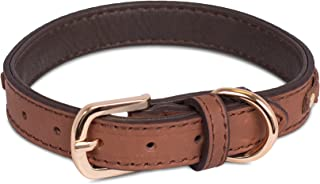Internet's Best Leather Dog Collar/Leash with Braiding