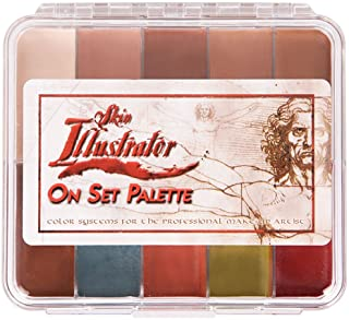 PPI Skin Illustrator On Set Flesh Tone Makeup Palette by Skin Illustrator