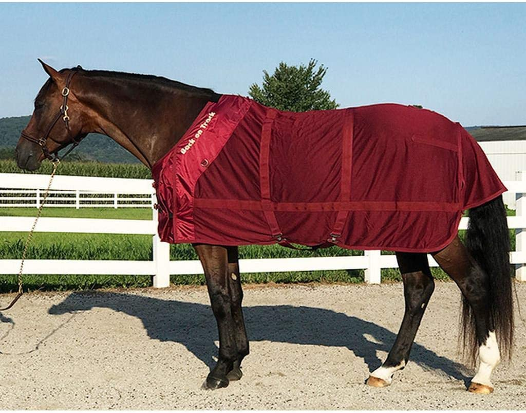Back on Track trend rank Colored Mesh Sheet 66 List price Neck Cover and Burgundy
