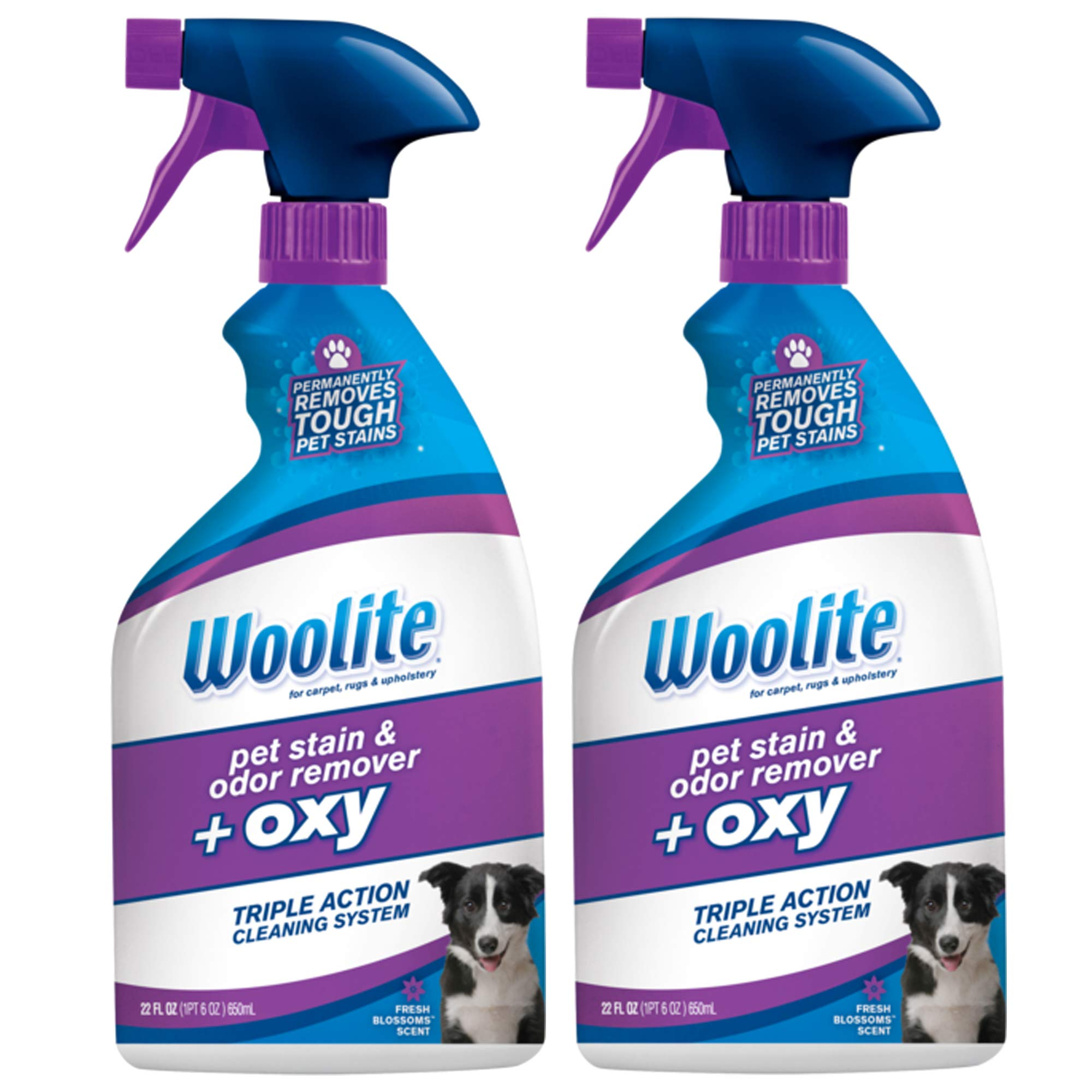 Woolite Stain Odor Remover 2834