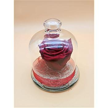 Rosa eterna roja. Gratis Tu Envío. Rosa preservada roja en cúpula de Cristal Hecho en España.: Amazon.es: Hogar