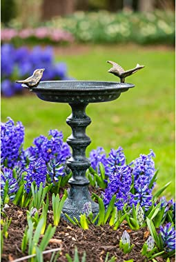 Evergreen Garden Cast Metal Bird Bath on Pedesta 20 x 19 x 15 Inches