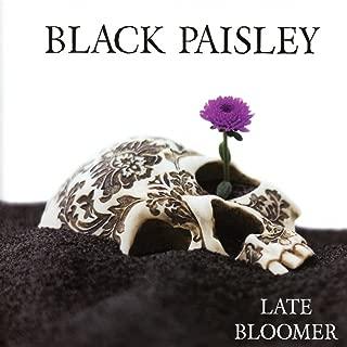 black paisley late bloomer