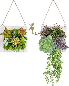 C&Z Hanging Wall Artificial Plants for Home Decor Indoor Set of 2 Succulents Plants Artificial in Wooden Frame 3D Greenery Wall Art Decor Faux Plants for Living Room Nursery Backdrop