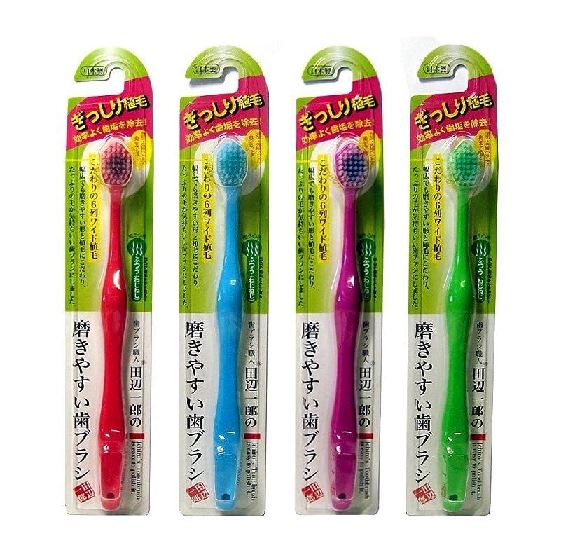 針かどうか等しいライフレンジ 田辺一郎の磨きやすい歯ブラシ 6列ワイドタイプ ふつう(ねじねじ) LT-31 4本セット(レッド?ブルー?パープル?グリーン)