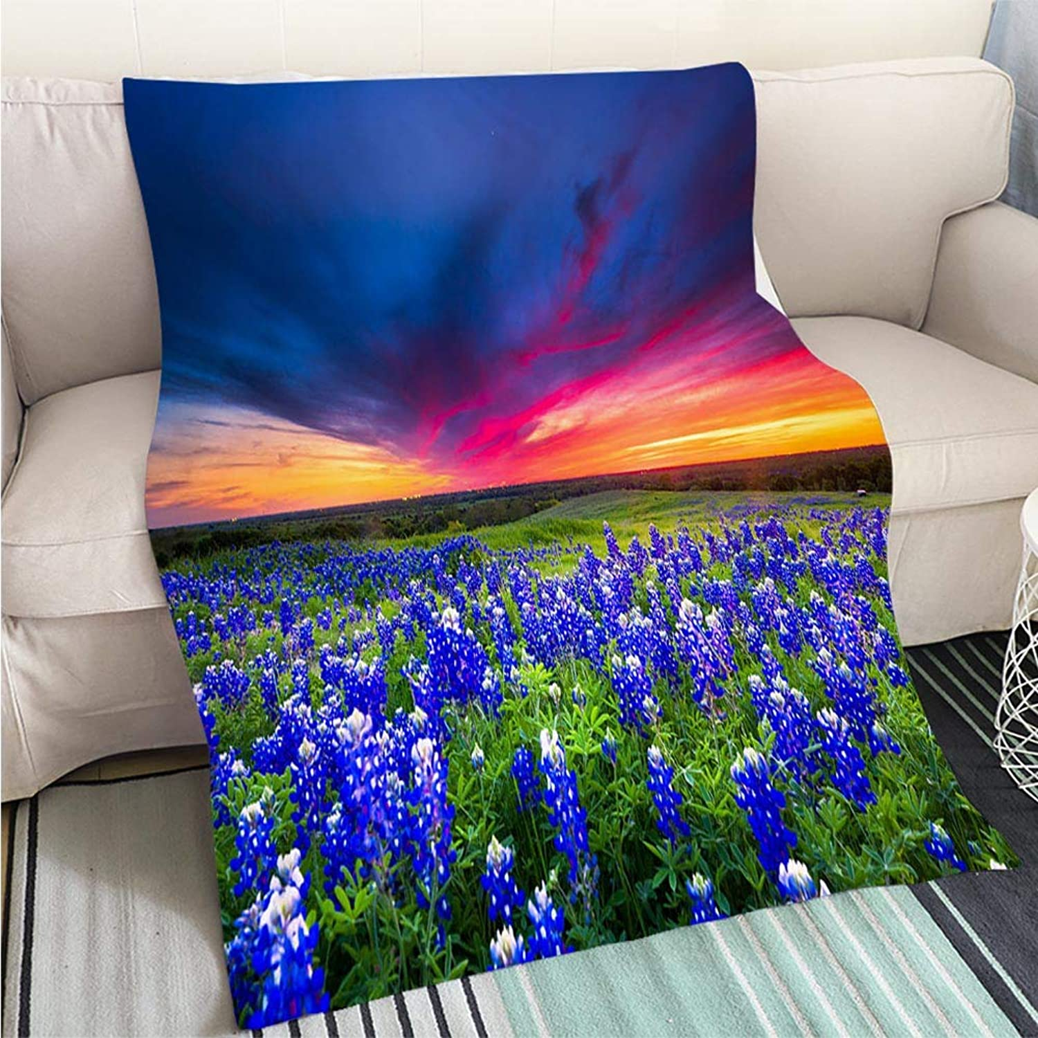 Comforter Multicolor Bed or Couch Field of bluee Flowers on Sugar Ridge Road Ennis Texas Hypoallergenic Blanket for Bed Couch Chair