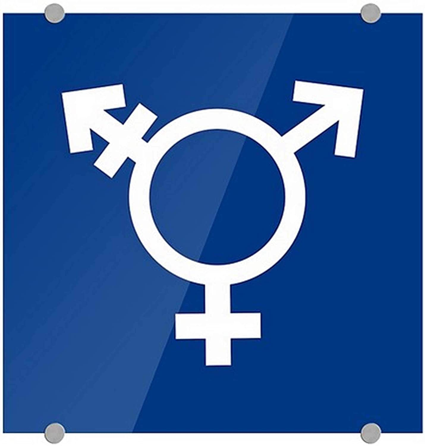 CGSignLab 2439190_5mbsw_16x16_None Transgender Symbol Blue an Free Shipping Cheap Bargain Gift in Free shipping
