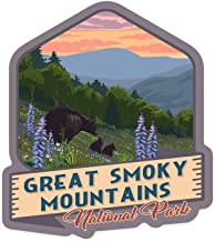 Lantern Press Great Smoky Mountains National Park, Tennessee - Bear and Spring Flowers - Contour 100772 (Vinyl Die-Cut Sticker, Indoor/Outdoor, Small)