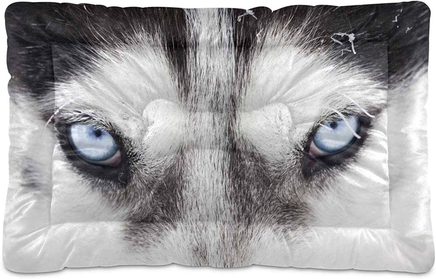 KEEPREAL Eyes of Wolf Gaze Cat Rectangle Dog Reservation Product Bed Comfortabl