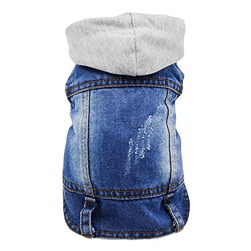 53113ac40a93 Funny Dog Clothes  Amazon.com