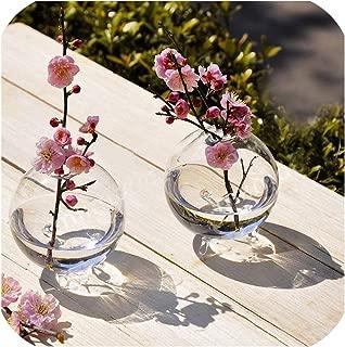 10cm Clear Ball Glass Vase Hydroponic DIY Table Garden Decor Flower Transparent Glass Vase