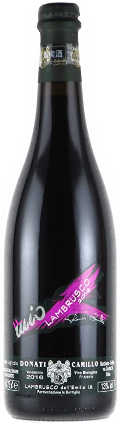 [ほぼ発泡なし] カミッロ?ドナーティ ランブルスコ 2016 赤ワイン 750ml