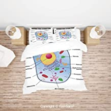 FashSam Luxury 4 Pieces Duvet Cover Bedding Set Microbiology Theme Animal Cell Structure Genetic Research School Study Science Decorative for Family(Queen)