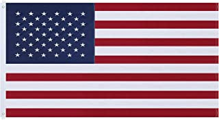 NuLink American Flag 8x12 Ft USA US Embroidered Stars Sewn Stripes Brass Grommets Flag 210D Oxford Nylon for Indoor Outdoor