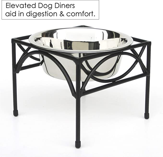 regal single bowl raised feeder)
