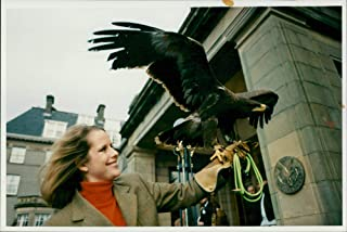 Vintage photo of Russian Steppe Eagle.
