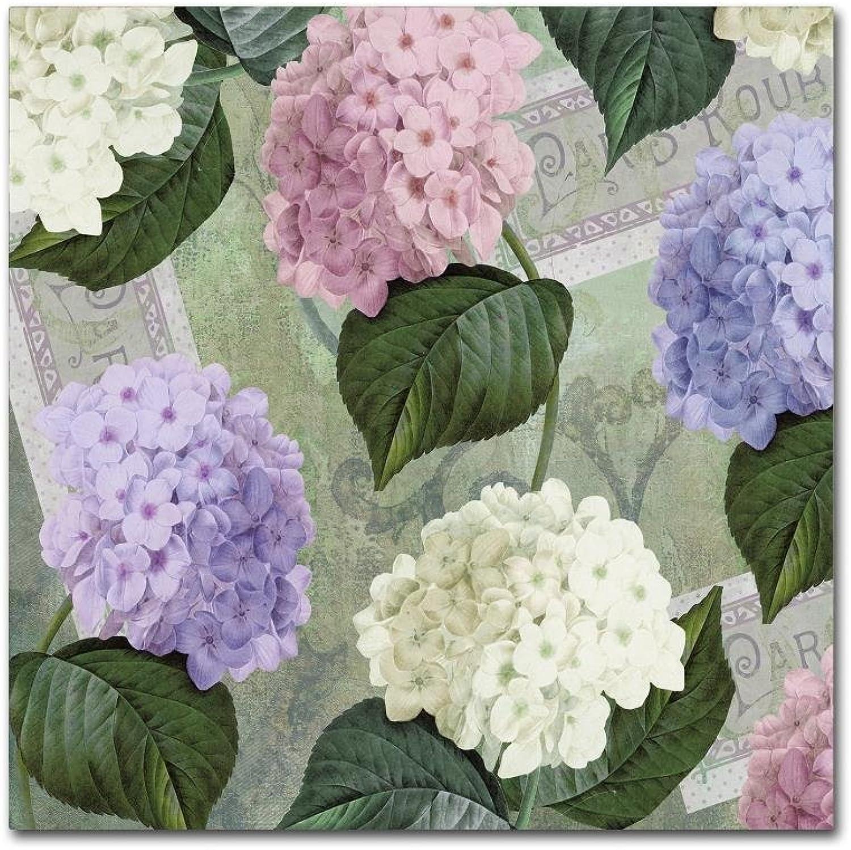Trademark Fine Art Hortensia Soft Green by color Bakery Canvas Wall Art 14x14