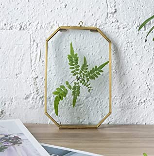 Art India Collections Home Decor Glass & Metal Hanging Picture Frame for Wall Decoration, with 2 Sides Glass - 5x7 inch (G...