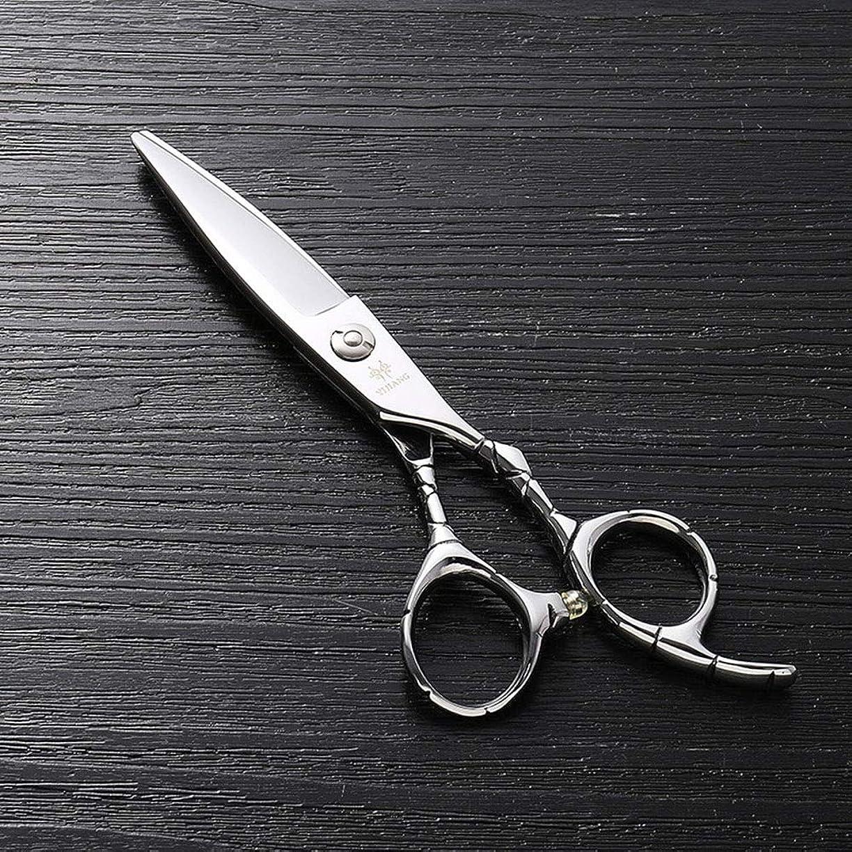 レッスン商業の運ぶ6インチのステンレス鋼のランセットの脂肪質の平らなせん断、美容院の専門の上限の理髪はさみ モデリングツール (色 : Silver)
