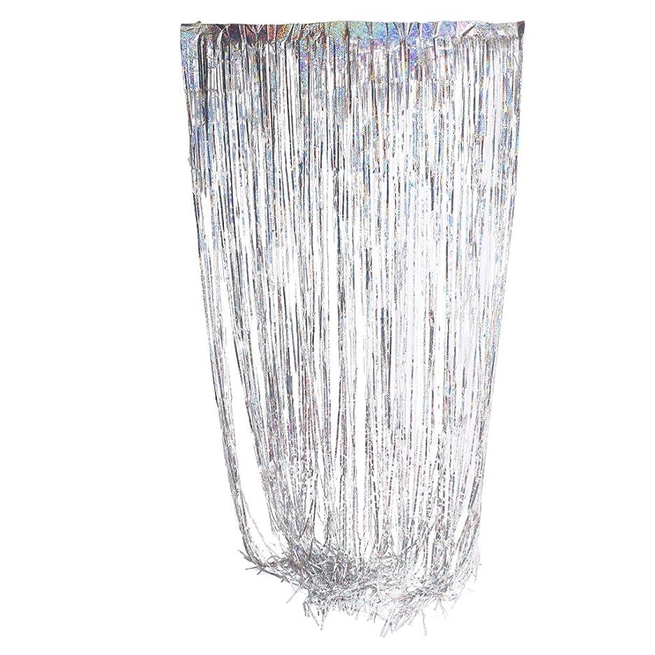 アクセスできない超高層ビルムスフリンジ ドア 窓 カーテン 結婚式 パーティー 装飾カーテン 全16色 - 銀, 2×1メートル