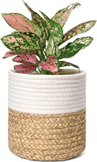 Mkono Cotton Rope Plant Basket with Water Hyacinth Modern Indoor Planter Up to 7 Inch Pot Tabletop Woven Storage Organizer with Handles Home Decor, 8
