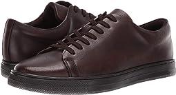 Colvin Sneaker H