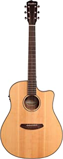 Best breedlove guitars for sale Reviews