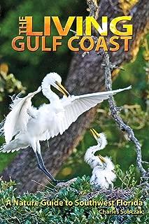 Best gulf coast na Reviews