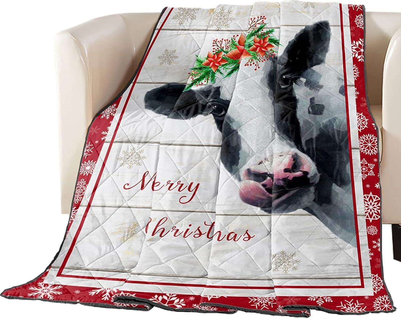 Down Alternative favorite Reversible Comforter Blanket Brand Cheap Sale Venue Throw Quilted Chri
