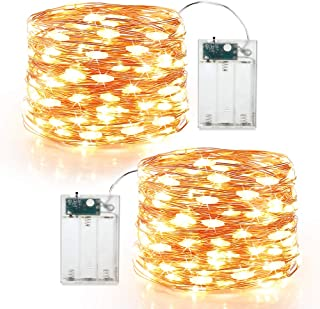 Brizled Fairy Lights, 19.47ft 60 LED Mini String Lights, 2 Modes Battery Powered Copper Wire Twinkle Lights Indoor Firefly Starry Lights for DIY, Wedding, Bedroom, Craft Decoration, Warm White, 2 Pack