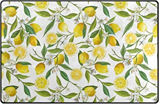 YOLIKA Non-Slip Area Rugs Nature Exotic Lemon Tree Branches Yummy Delicious Kitchen Gardening Design Fern Green Yellow White Print Floor Mat Living Room Bedroom Dinning Kitchen Carpets Doormats