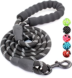 BAAPET 5 FT Strong Dog Leash with Comfortable Padded...