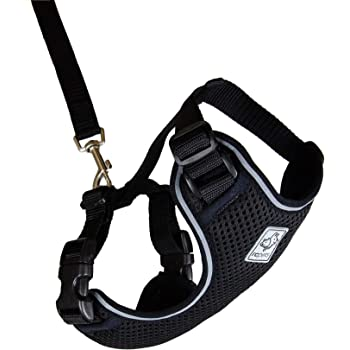 Rc Pet Products Adventure Kitty Harness Cat Walking Harness Small Black 53803001 Amazon Co Uk Pet Supplies