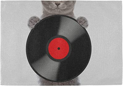 NQEONR Office Coffee Mat Headphone Music Cat Animal 12x18 Inch Children Place Mat Set of 6 Double Fabric Printing Cotton Linen for Kitchen Table