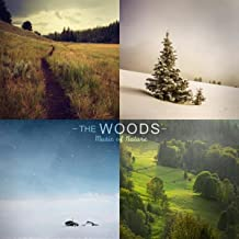 The Woods (Nature Sounds, Birds, Rain, Thunderstorm, Brook, Forest, Ocean Waves, Crickets, Peaceful, Lullaby, Sleep, Sleeping, Sound Effects, Royalty Free Sfx)