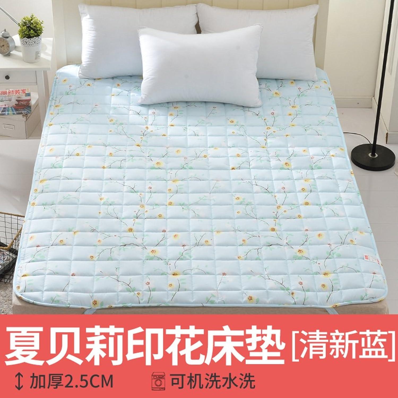LJ&XJ Washable Matt mat, Lightweight Non-Slip Anti dust mite Mattress Topper, Soft Comfortable Tatami Mattress-D 150x200cm(59x79inch)