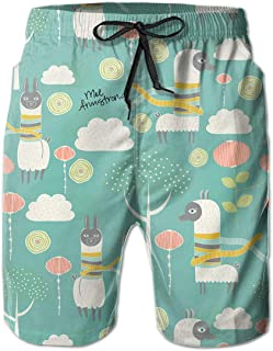 Mens Swim Trunks Orca Whale Ocean Pastel Blue Quick Dry Beach Board Shorts with Mesh Lining