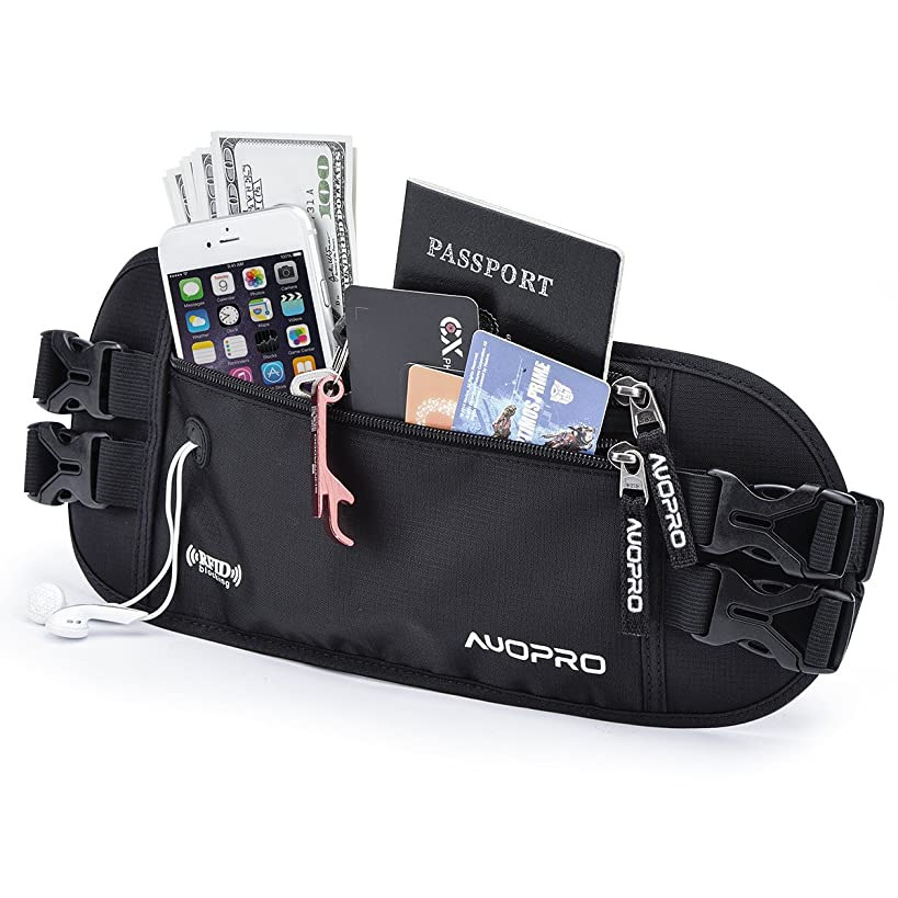 Hidden Money Belt, RFID Travel Wallet Passport Holder Security Waist Pouch