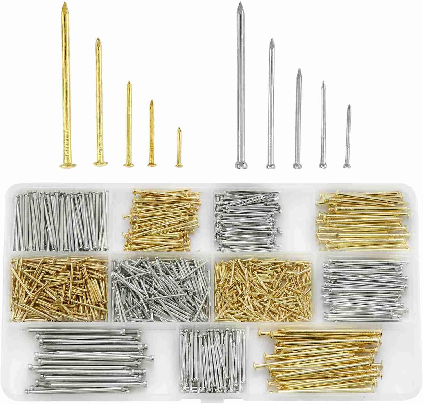 Litorange Hardware Assorted Nails Set 10 Sizes 900 PCS 13-50 Millimetres for Home Repair and DIY Finish Common Wood Furniture Home Assortment Construction Nails