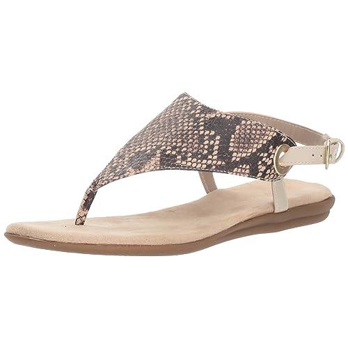 a680da7e5 Aerosoles Women s Conchlusion Gladiator Sandal