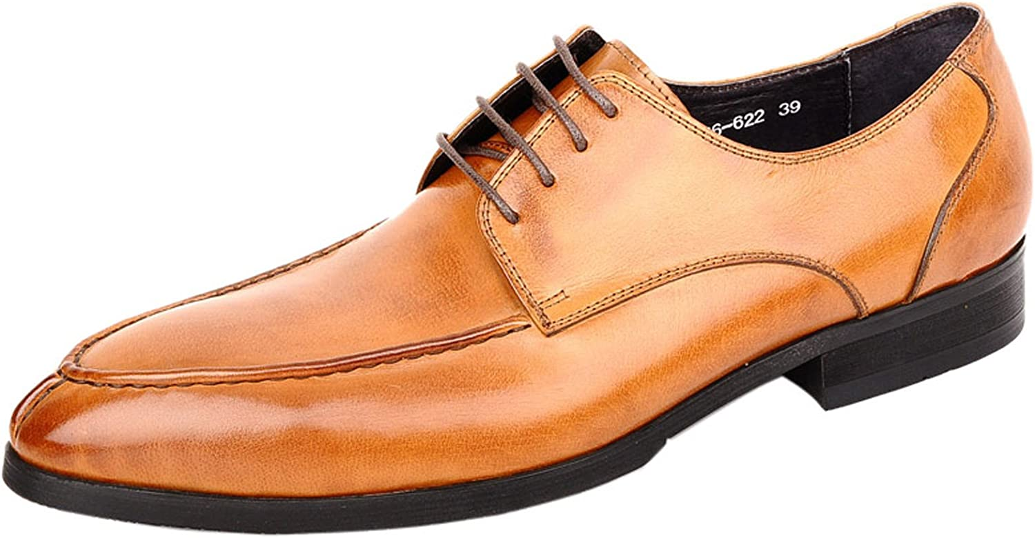 LIVEINU Men's Classic Leather Dress shoes