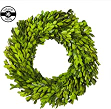 Preserved Boxwood Wreath Indoor Wall Window Party Decor Year Round Green Wreath (14 Inch)