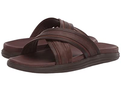 Sperry Gold Cup Amalfi Cross Strap (Brown) Men