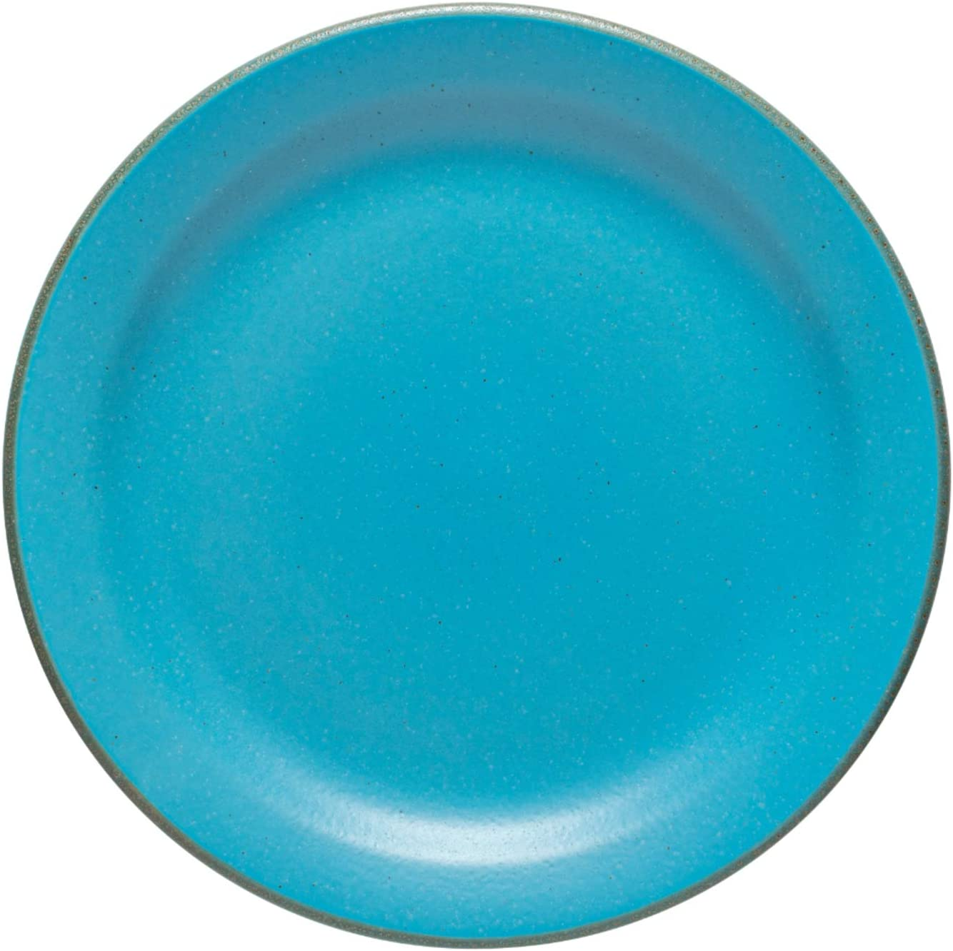 Casafina Positano Collection Houston Mall Stoneware Dinner Plate 11