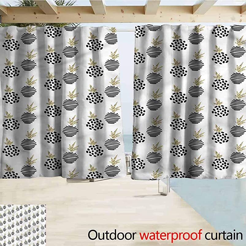 MaryMunger Balcony Curtains Pineapple Abstract Tropical Fruits Energy Efficient, Darkening W63x45L Inches iarefazm950583