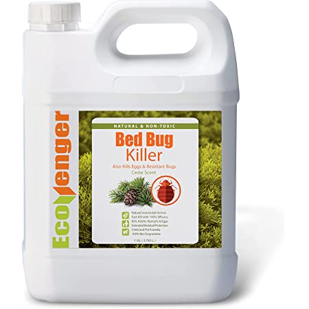 EcoRaider Bed Bug Killer Spray Jug, Green + Non-toxic, 100% Kill + Extended Protection, 128 Fl Oz (Pack of 1)