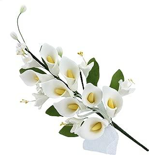 Best edible calla lilies Reviews