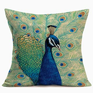 Ekavya Throw Pillow Cushion Covers Linen Beautiful Full Color Peacock Feather Artistic Pillow Covers Home Sofa Bed Decor Natural Pattern Decorative Pillowcases 18x18 inch (Pillow #-11)
