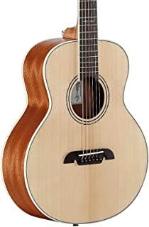 Best alvarez acoustic parlor guitar kit Reviews