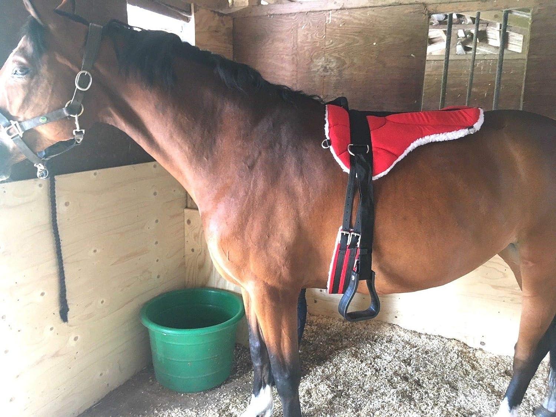 Cwell Equine MICRO SUEDE BAREBACK PAD AND Max 56% OFF STIRRUPS SA Las Vegas Mall FREE GIRTH